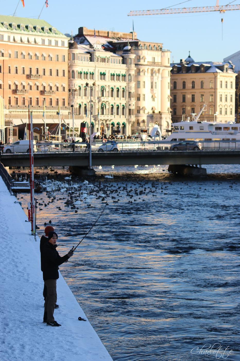 Stockholm badade i sol idag