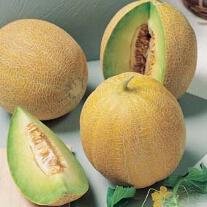 Melon Arava F1