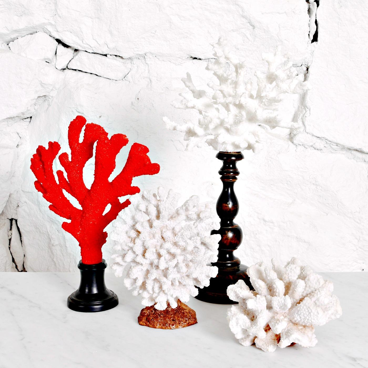 Koraller