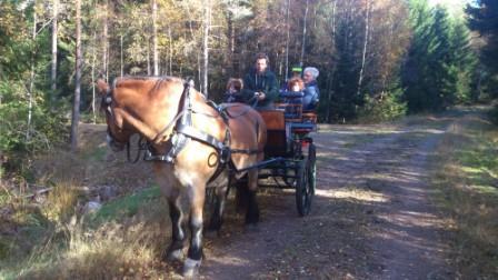 Bob provade på att hålla i tömmarna. I vagnen åker hans föräldrar och  två söner.
