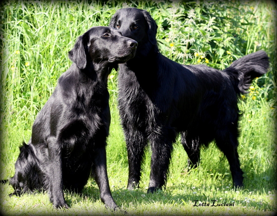 Tyra & Pepzi
