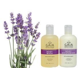 Body Wash+Bodylotion- Lavender & Frankincense - Body Wash+Bodylotion