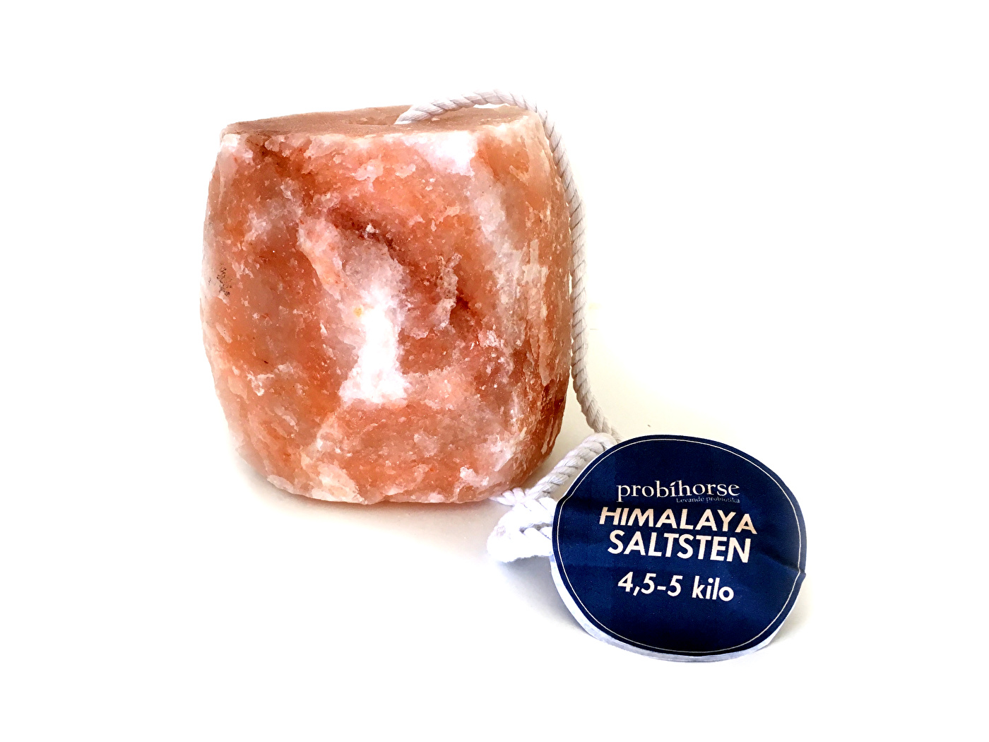 saltsten