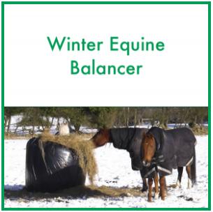 ForagePlus: Winter Equine Balancer, 5 kg -