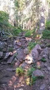 Stenigt på väg ner från Slottdalskrevan