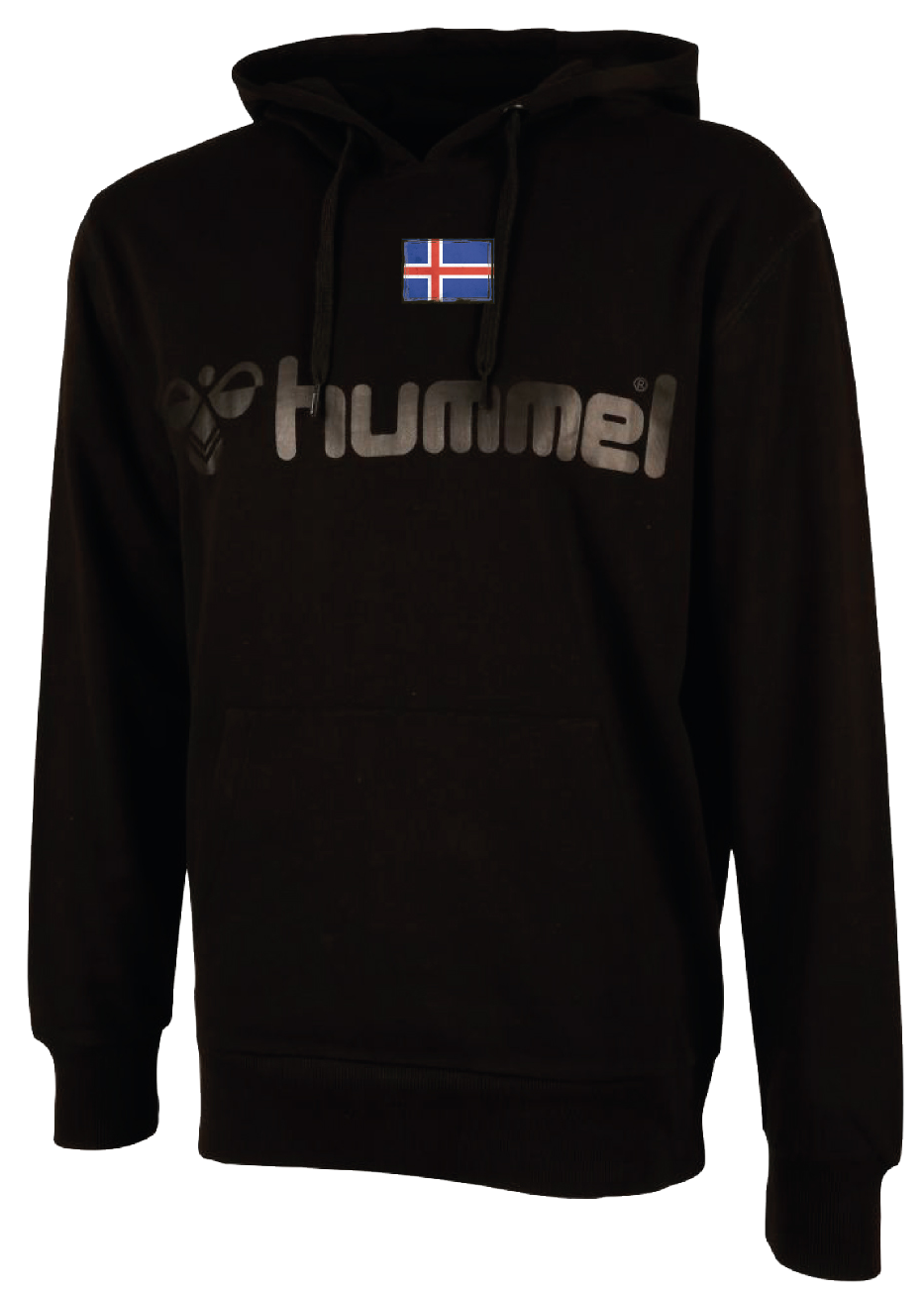 Hoodie Front ICE
