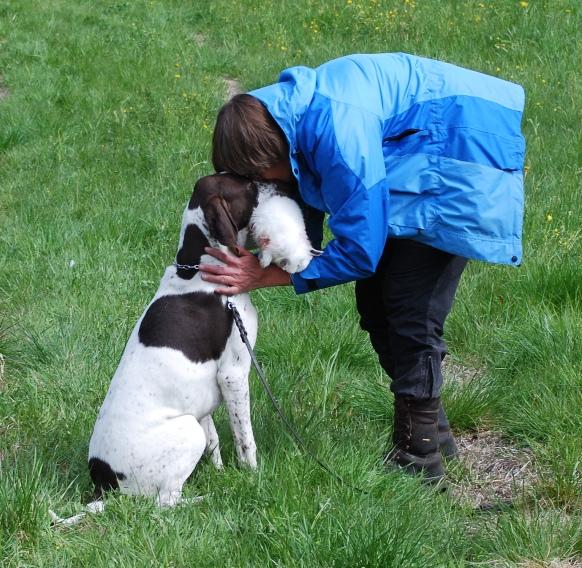 Med våren drar diverse hundkkurser igång, t ex i apportering.