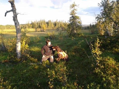 Skogsmarker när de är som bäst...Jaana och Lynx trivdes!