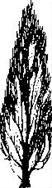 Encaustic Art - Stämpel - Poppel