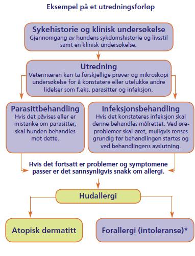 Bild og text fra Novartis Animal Health informasjonsblad for dyreier.