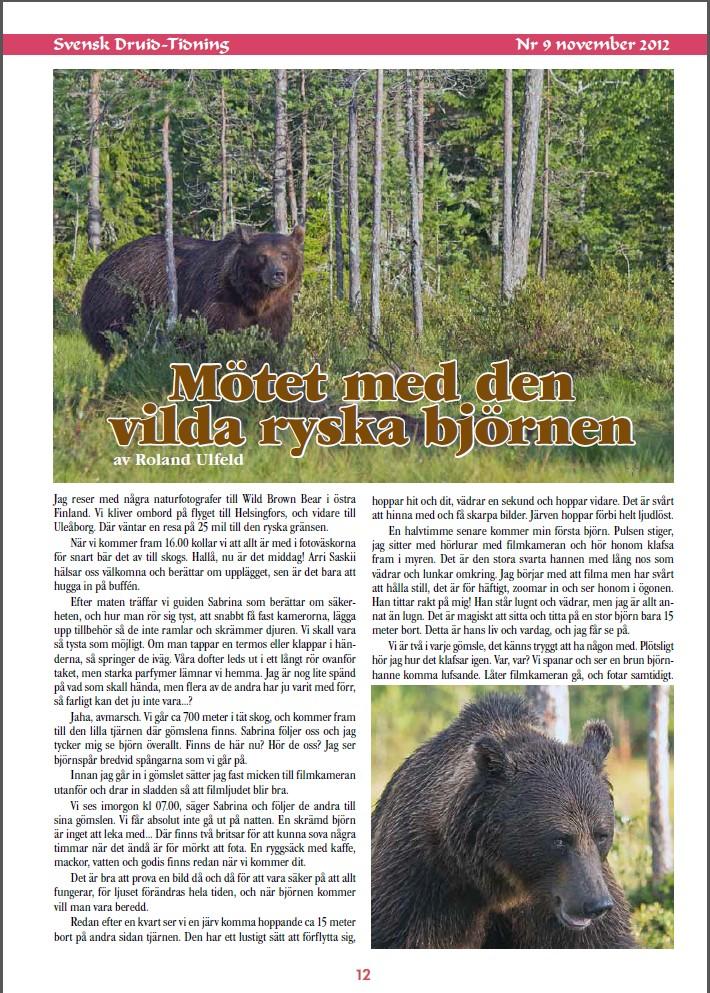 Artikel i Svensk Druidtidning nr 9 nov 2012