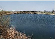 Dammen på Södergård är bra till bevattning och gynnar biodiversiteten.