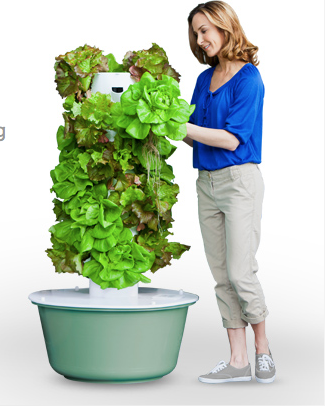 Picture cred to https://www.towergarden.com