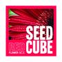SEED CUBE - Röd