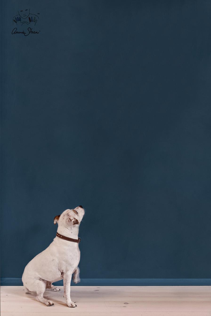 Annie Sloan Aubusson Blue Wall Paint väggfärg
