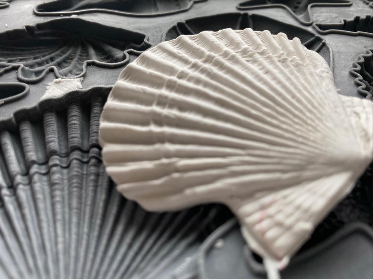 IOD Dekorform Seashells i Monicas Butik