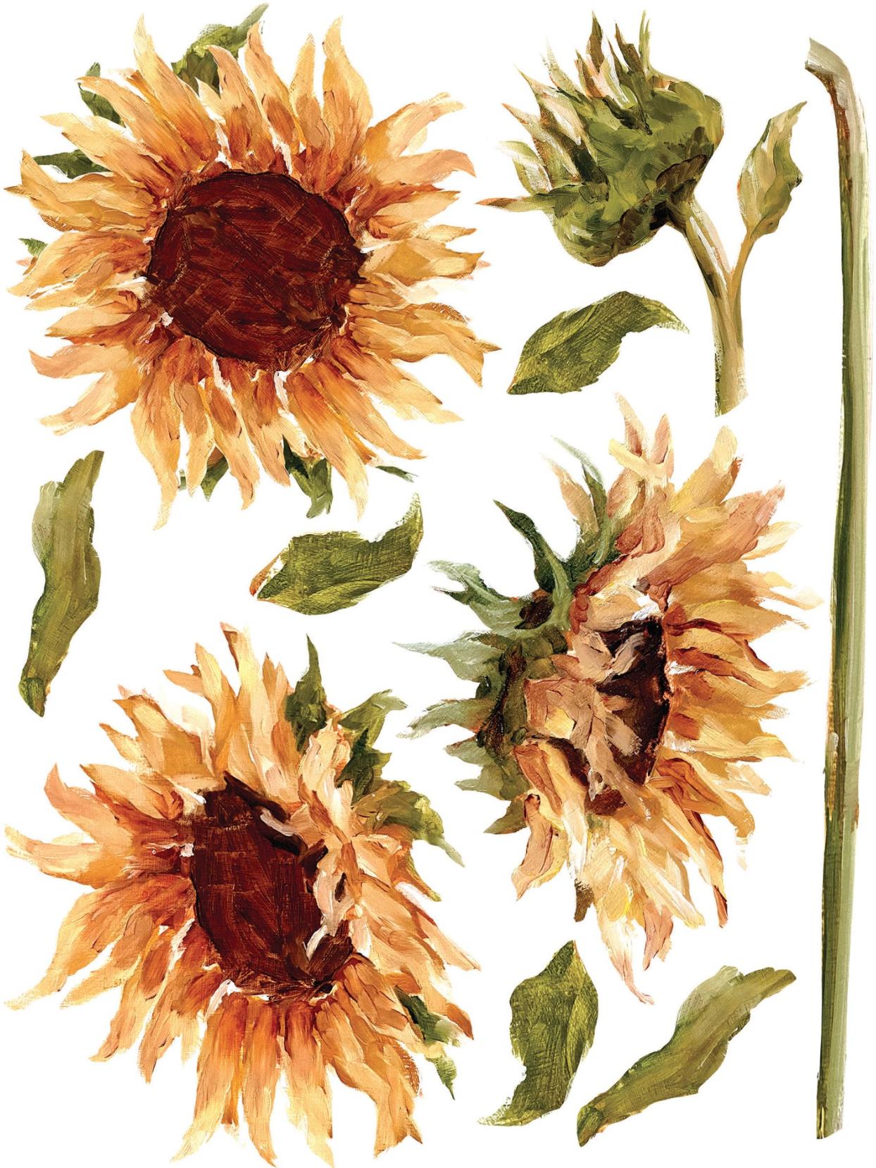 IOD Painterly Florals Dekortransfer