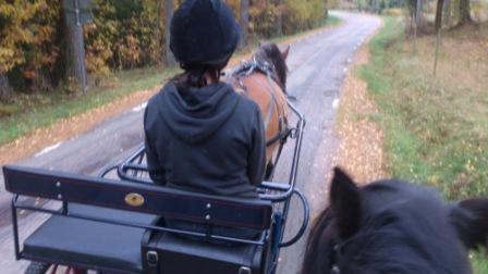 Bettan kör Liiv och jag rider på Fanny.