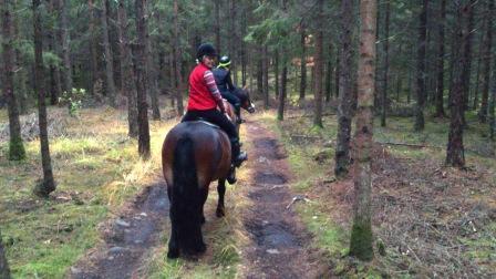 Katrin och Agneta på ridtur i Skallinge Gårds egen skog.
