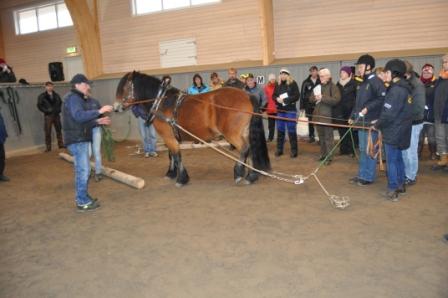 Det var riktigt kul att se det samspel kuskdeltagarna hade sinsemellan och gentemot hästen. Övningen gick som på räls under Lars-Åkes ledning som tog tillfälle i akt att visa hur man ska göra när något intressant dyker på. Lugna trygga människor ger lugna trygga hästar!