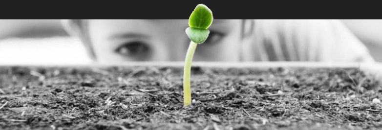 Tillväxt och utveckling