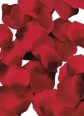 Rosblad - Röda