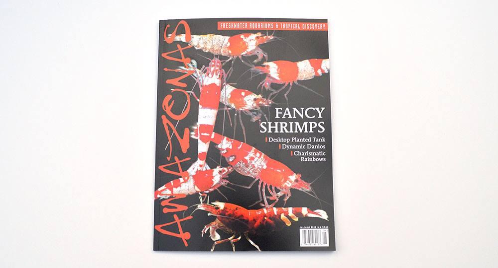 amaz shrimp