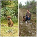 Zeke i skogen med matte Louise