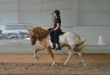 Jag och Freyja på kurs hos Hinni förra fredagen. Bild Åsa Rott
