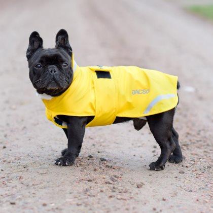 Hundregntacke-pippi-gul3