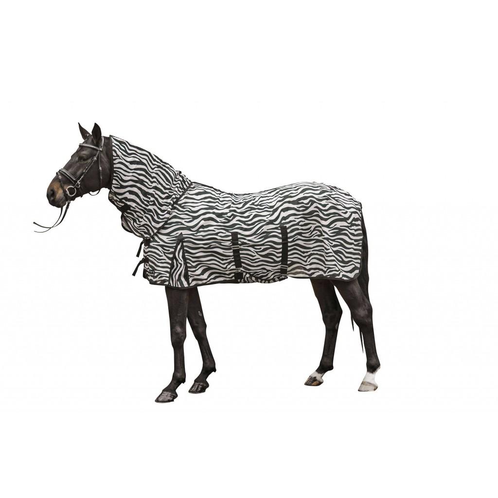 Zebra-tacke-4669_1