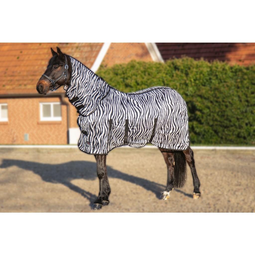 Zebra-tacke-4669_2