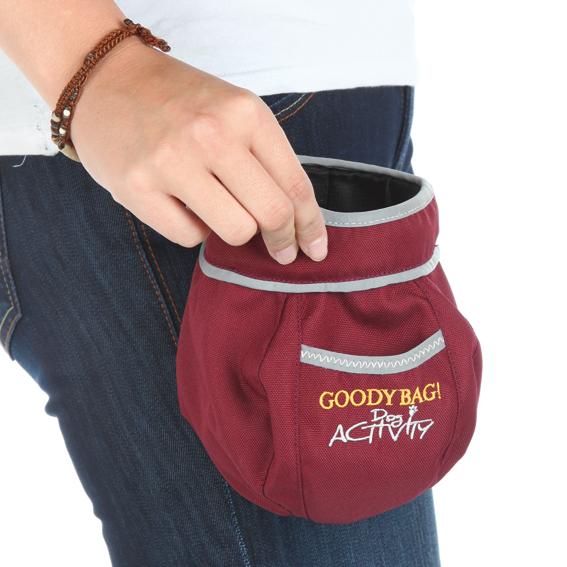 2815-Goody-Bag-2