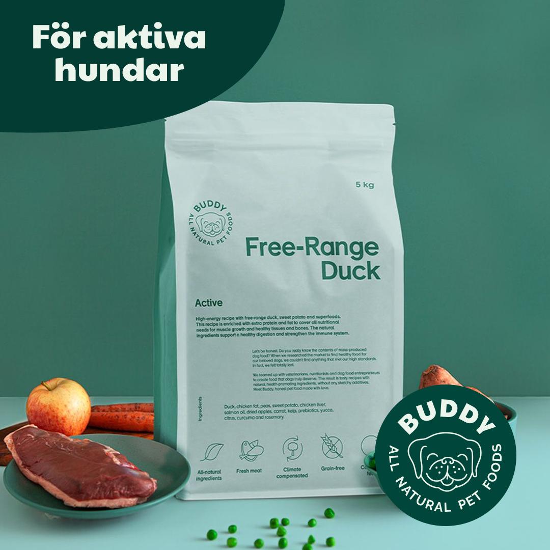 buddy_b2b_4_free_range_duck_A
