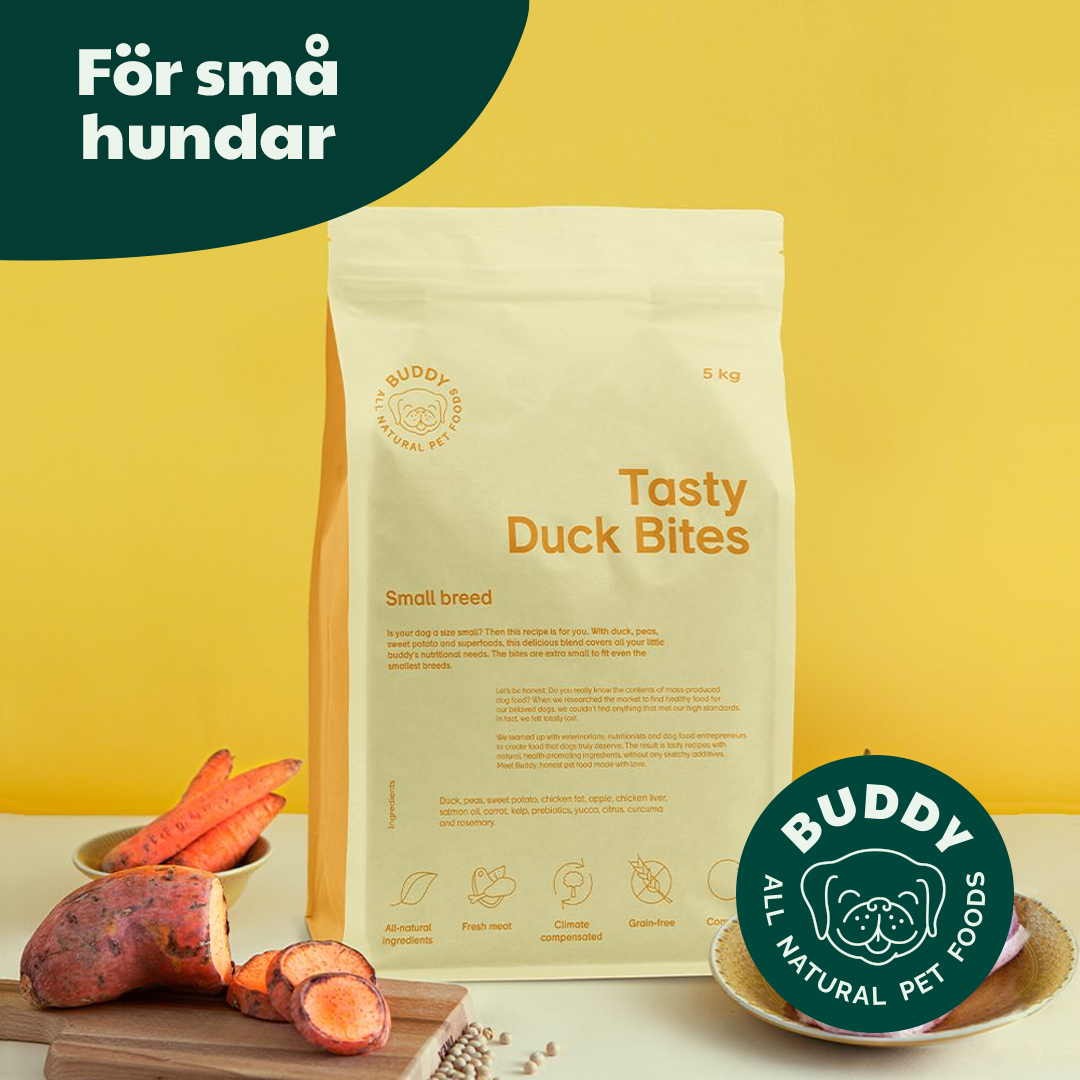buddy_b2b_4_tasty_duck_bites_A