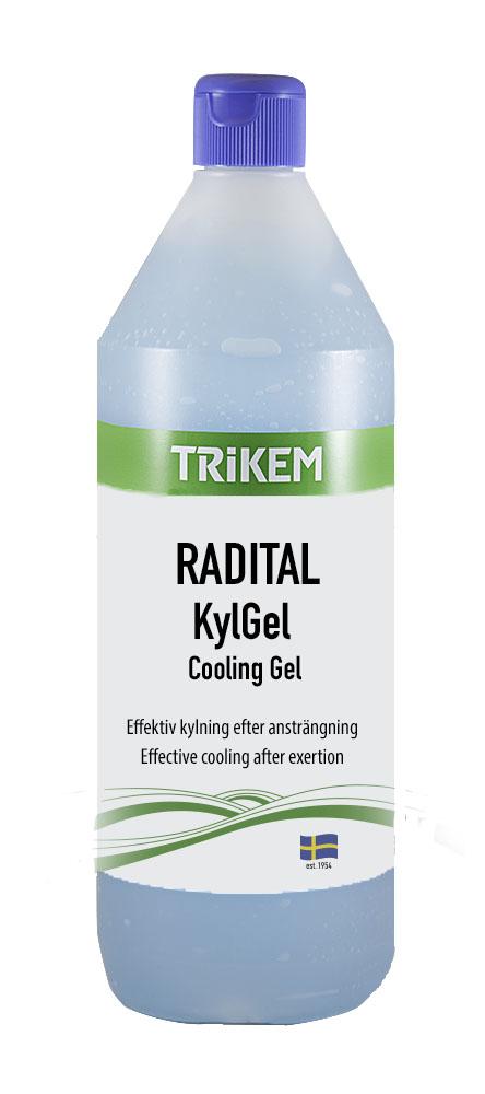 1721010 RADITAL KylGel 1 l