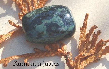 Kambaba2