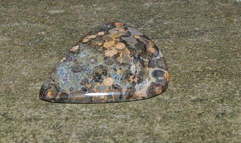 leopard skin 34x29 2