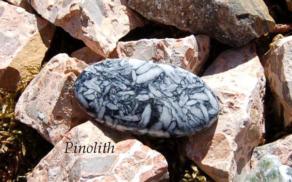 Pinolith43x23mm