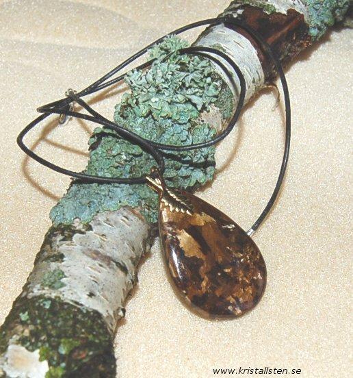 Vacker Bronzit sten i halsband