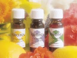 Aroma Aroma Creative Eteriska Oljor 10ml EKO - Eukalyptus