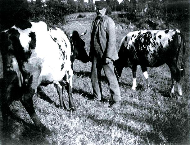 Höka Gustaf 1920 på Hökatorp. Foto från Mats Green, 2017