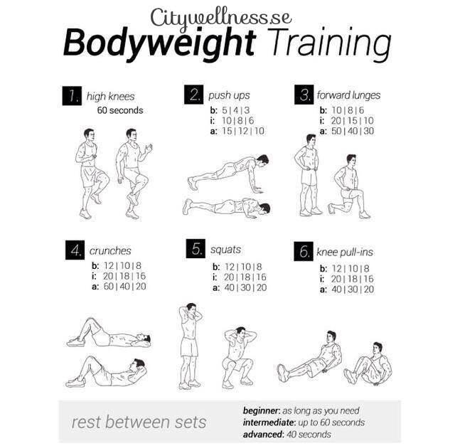 träningsprogram gym 5 dagar