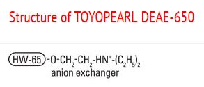 Structure of Toyopearl DEAE-650