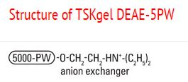 Structure of TSKgel DEAE-5PW
