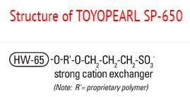 Structure of Toyopearl SP-650