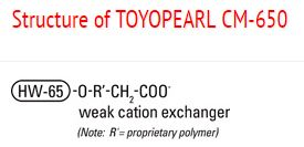 Structure of Toyopearl CM-650