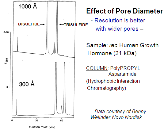 PolyPROPYL Aspartimide - Effect of Pore Diameter