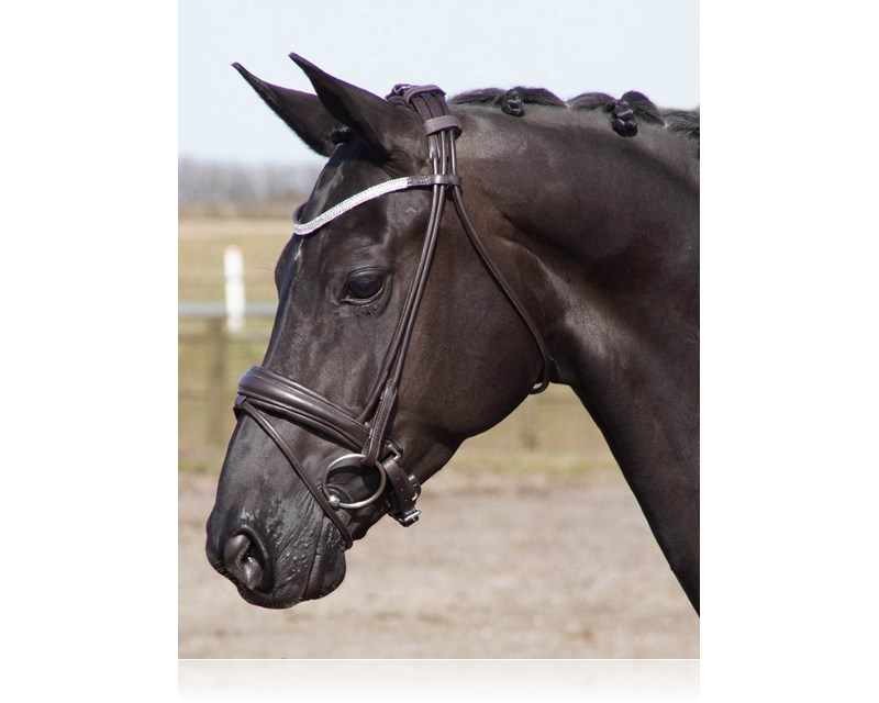 R-296 SD CROWN Davinci rolled bridle brown horseW