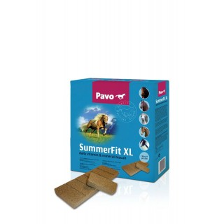 SummerFitXL-320x320